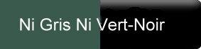 Farbe_ni-gris-ni-vert-noir_gerbe